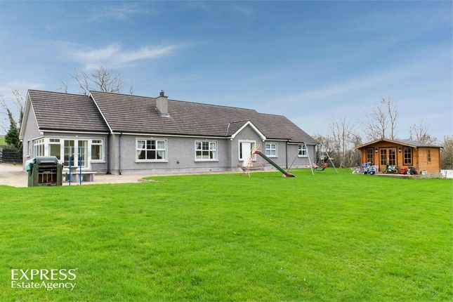 Thumbnail Detached bungalow for sale in Terryhoogan Road, Scarva, Craigavon, County Armagh