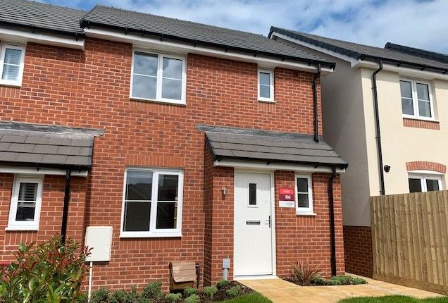 Thumbnail Semi-detached house to rent in Wagtail Walk, Axminster