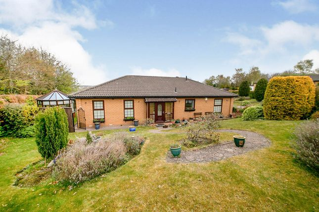 Thumbnail Bungalow for sale in Reedside, Ryton, Tyne And Wear
