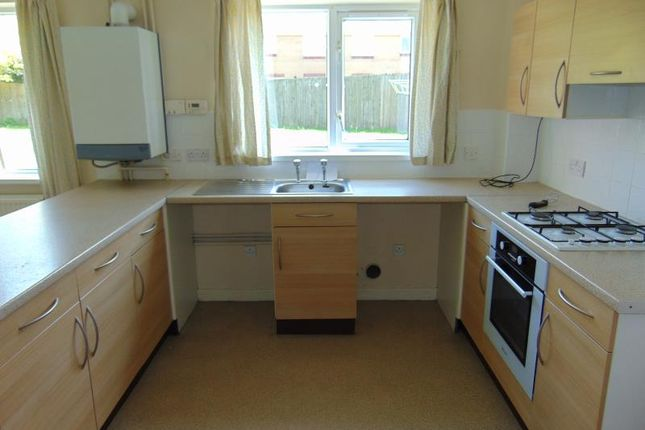 Thumbnail Semi-detached house to rent in Cormorant Close, Cashfield Estate, Haverfordwest