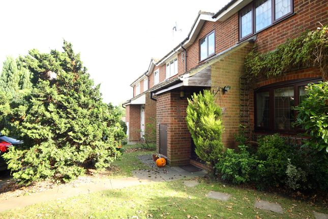 Thumbnail Terraced house to rent in Kingcup Drive, Bisley, Woking
