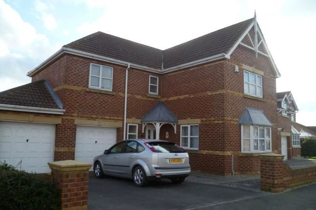 Thumbnail Detached house to rent in Cromwell Road, Hedon, Hull