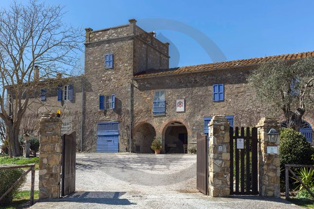 Thumbnail Farmhouse for sale in Via Della Capitana, Magliano In Toscana, Grosseto, Tuscany, Italy