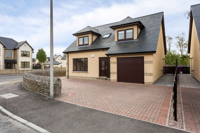 Thumbnail Property for sale in The Fiddlers, Monikie, Angus