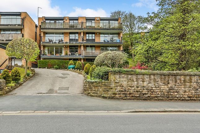 Thumbnail Flat for sale in Graham Road, Sheffield
