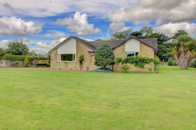 Thumbnail Bungalow for sale in Croft Place, Newton-By-The-Sea, Alnwick