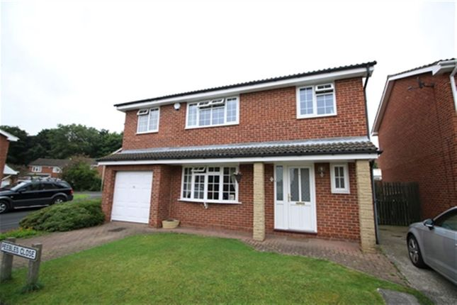 Thumbnail Detached house to rent in Peebles Close, Darlington, County Durham