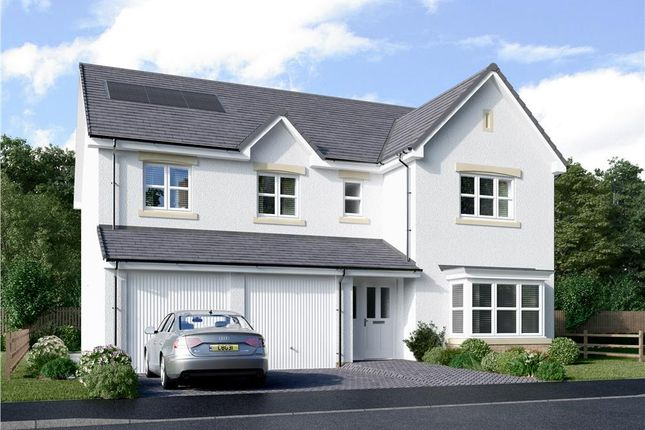 "Thumbnail Detached house for sale in ""Porterfield"" at Murieston Road, Murieston, Livingston"