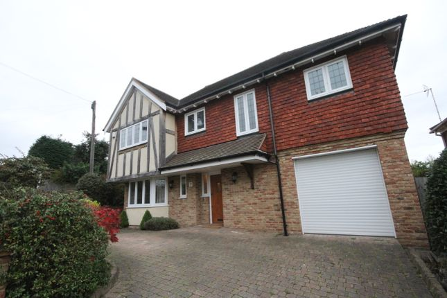 Thumbnail Detached house to rent in Orchard Grove, Orpington