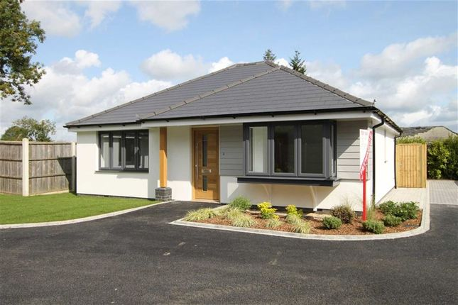 Thumbnail Detached bungalow for sale in Rose Gardens, Highcliffe, Christchurch, Dorset
