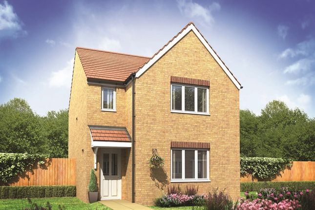 "Thumbnail Detached house for sale in ""The Hatfield"" at Sterling Way, Shildon"