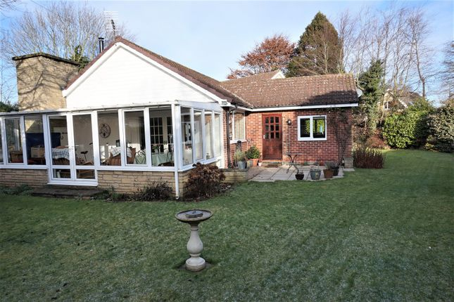 Thumbnail Detached bungalow for sale in Common Road, Thorpe Salvin