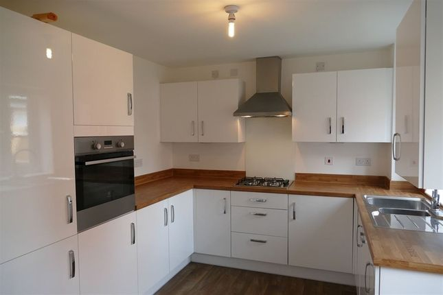Thumbnail Property to rent in Marylebone Place, Freemens Meadow, Leicester