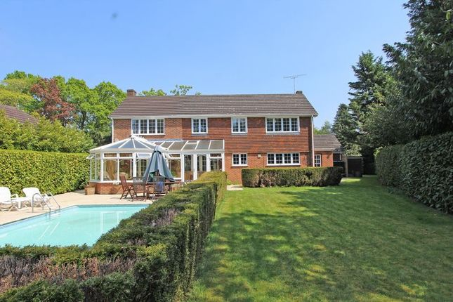 Thumbnail Detached house for sale in Belbins, Romsey