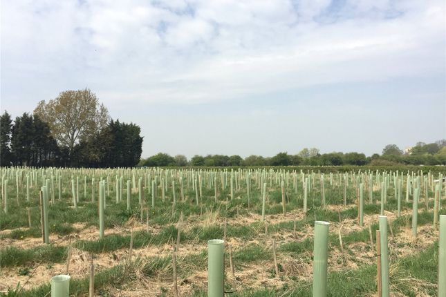 Land for sale in Lot 2: Land At Bubwith, Bubwith, Selby, North Yorkshire