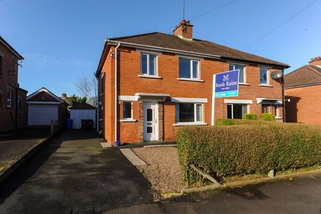 Thumbnail Semi-detached house for sale in Norwood Drive, Belmont, Belfast