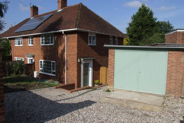 Thumbnail Semi-detached house to rent in Anglesea Road, Ipswich