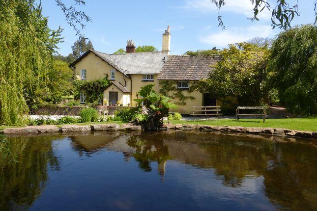 Thumbnail Farmhouse for sale in Luccombe, Minehead