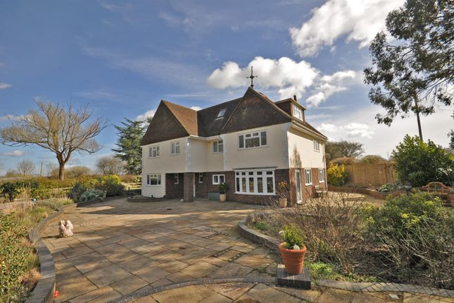 Thumbnail Detached house for sale in Glynleigh Road, Hankham, Pevensey