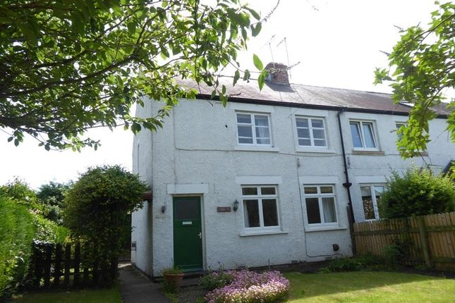 Thumbnail Cottage for sale in Great Langton, Northallerton