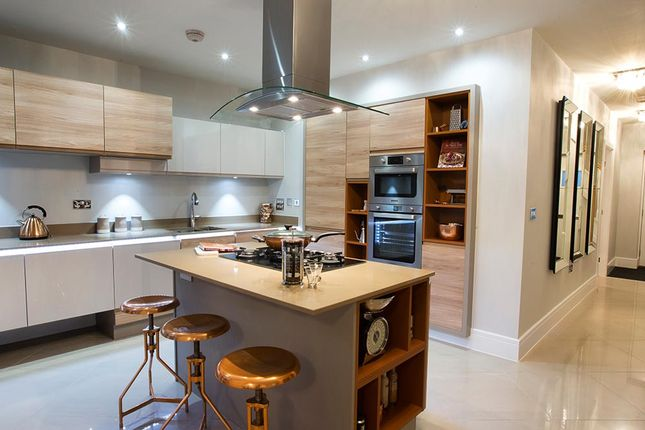 """Thumbnail Detached house for sale in """"The Cotham Showhome"""" at Hastings Road, Sheffield"""