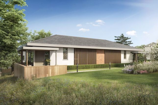 Thumbnail Property for sale in Howarth Park, Milford Hill, Salisbury
