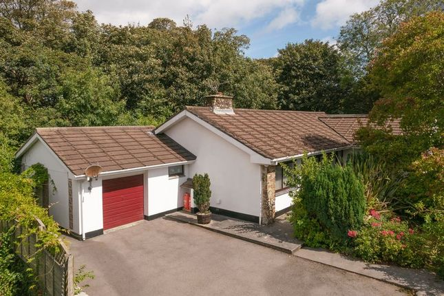 Thumbnail Detached bungalow for sale in Rectory Gardens, Camborne