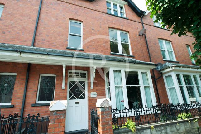 Thumbnail Shared accommodation to rent in Stanley Road, Aberystwyth, Ceredigion
