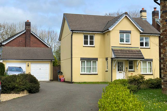 Thumbnail Detached house to rent in Robin Drive, Launceston