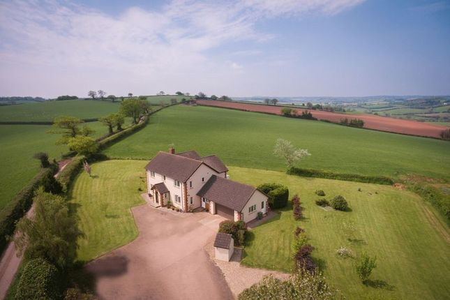 Thumbnail Detached house for sale in Cheriton Fitzpaine, Crediton