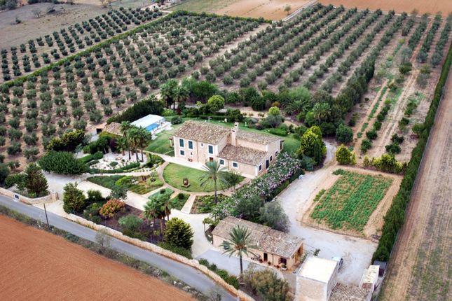 Thumbnail Villa for sale in Campos Countryside, Mallorca, Balearic Islands