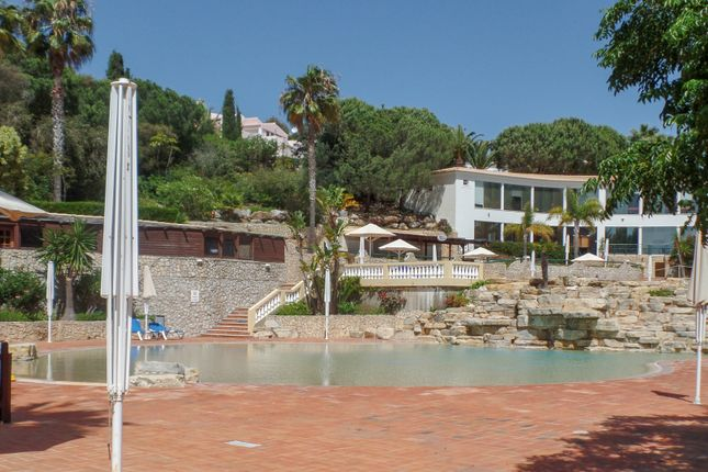 Spa Gymnasium And Main Pool