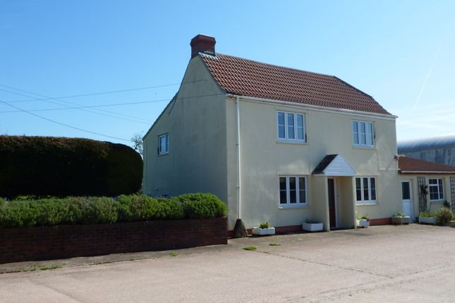 Thumbnail Detached house to rent in Meare Green North Curry, Taunton
