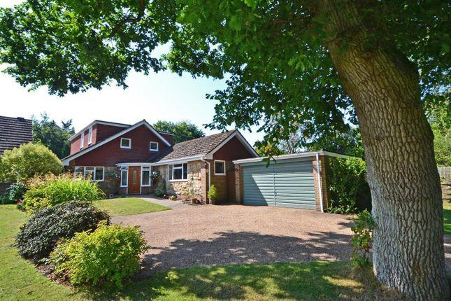 Thumbnail Detached bungalow for sale in Link Hill, Storrington, Pulborough
