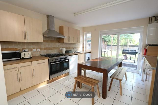 Thumbnail Semi-detached house to rent in Garendon Green, Loughborough