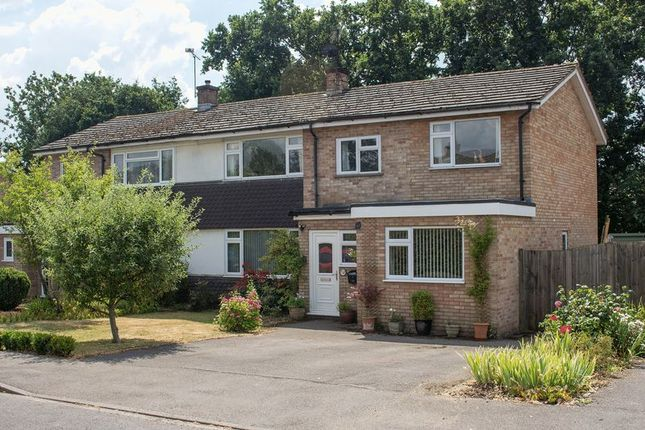 Thumbnail Semi-detached house for sale in Abbotsford, Bartley, Southampton