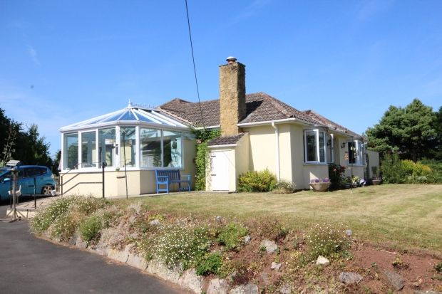 Thumbnail Detached bungalow for sale in Church Road, North Newton, Bridgwater