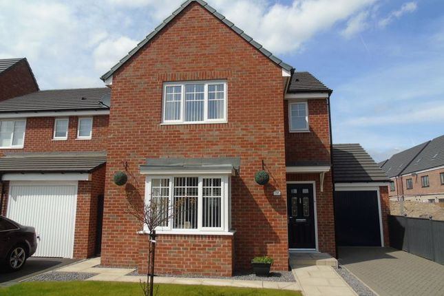 Thumbnail Detached house for sale in Surtees Haugh, Blaydon-On-Tyne