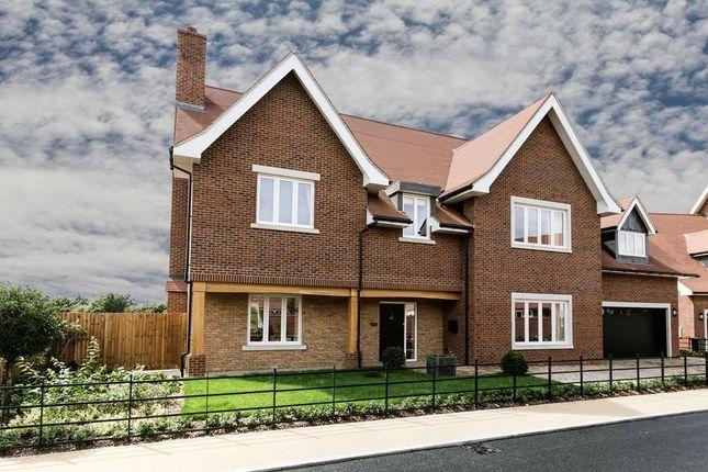 Thumbnail Detached house for sale in Bonham Grange, Church Road, Bulphan, Essex