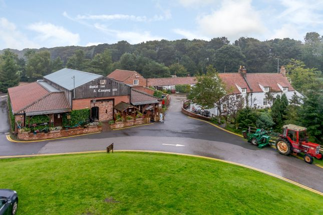 Thumbnail Detached house for sale in Main Road, Staxton, Scarborough
