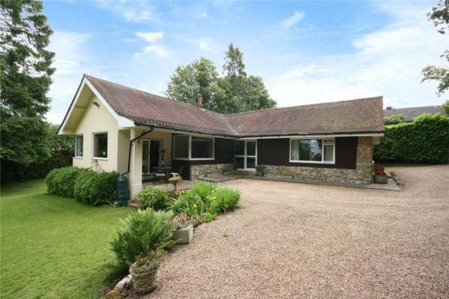Thumbnail Detached bungalow for sale in Beacon Road, Crowborough