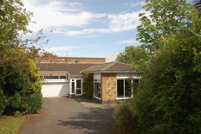 Thumbnail Detached house to rent in Edge Hill, Ponteland, Newcastle Upon Tyne