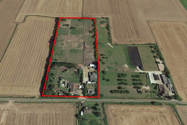 Thumbnail Equestrian property for sale in Leverington, Wisbech - Cambridgeshire