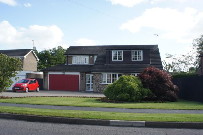 Thumbnail Detached house for sale in Leicester Road, Markfield, Leicester