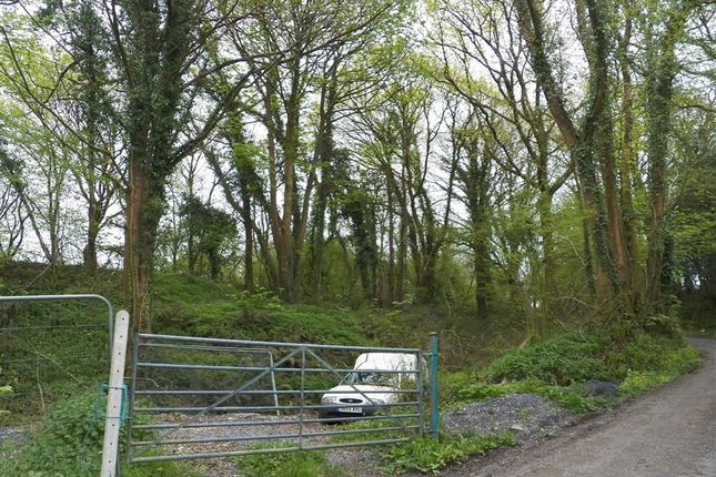 Land for sale in B4317, Opposite Plas Bach Cottages, Pontyates, Llanelli