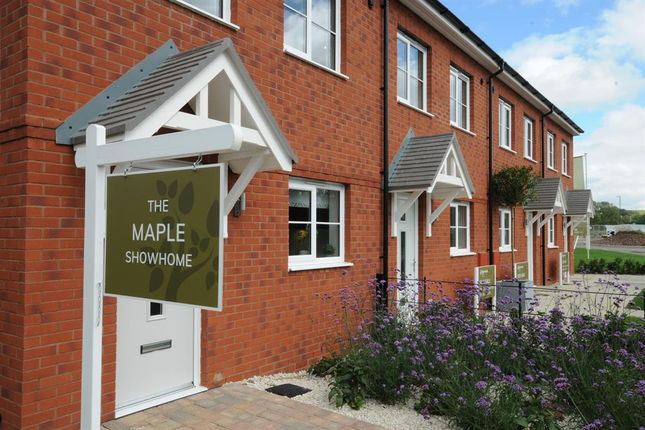 Thumbnail 3 bed terraced house for sale in The Maple, Harwood Homes, Great Oldbury