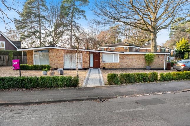 Thumbnail Bungalow for sale in Heathermount Drive, Crowthorne