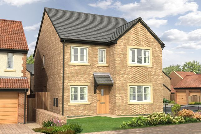 Thumbnail Detached house for sale in The Juniper - Nursery Gardens, Station Road, Stannington
