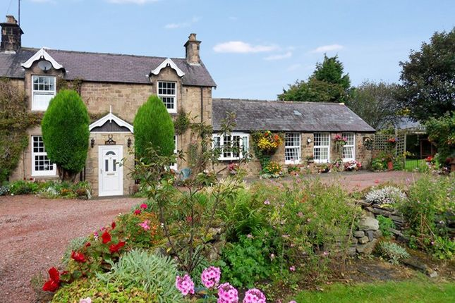 Thumbnail Semi-detached house for sale in Tow House, Hexham