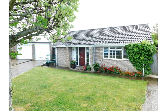Thumbnail Detached bungalow for sale in Lower Drive, Seaford